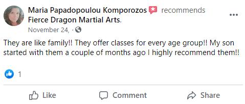 Kids3, Fierce Dragon Martial Arts Academy Whitestone NY