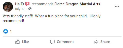 Kids4, Fierce Dragon Martial Arts Academy Whitestone NY